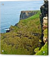 Cliff Of Moher 16 Acrylic Print