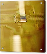 Computer Circuit Board Acrylic Print by Tim Vernonlth Nhs Trust