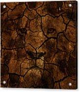 Cracks Of A King Acrylic Print