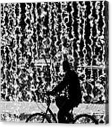 Cycling Silhouette Acrylic Print by Carlos Caetano