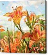 Digital Painting Of Orange Daylilies Acrylic Print