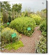 Dilston Physic Garden, Northumberland, Uk Acrylic Print