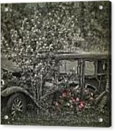 Driven To Find Love  Acrylic Print