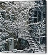Drolet Street In Winter, Montreal Acrylic Print