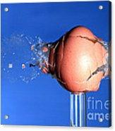 Egg Hit By A Bullet Acrylic Print