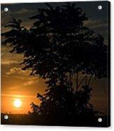 Evening Sunset  Acrylic Print