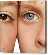 Eye Colour Acrylic Print