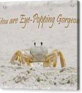 Eye Popping Gorgeous Acrylic Print