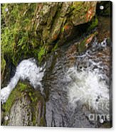 Fall Of Water Acrylic Print