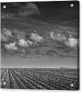 Field Furrows And Clouds In South East Texas Acrylic Print