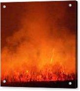 Fire's Glow Acrylic Print