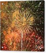 Fireworks Acrylic Print by Juan  Silva