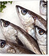 Fishes Acrylic Print by Jane Rix
