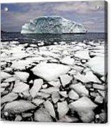 Floating Ice Shattered From Iceberg Acrylic Print