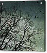 Flock Of Birds Flying Over Bare Wintery Trees Acrylic Print