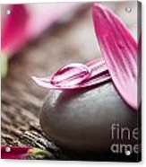 Flower Petals Acrylic Print
