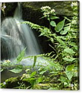 Flowers And Falls Acrylic Print
