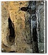 Fossilties Acrylic Print