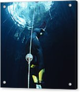 Free-diver Acrylic Print by Alexis Rosenfeld