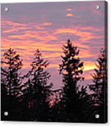 Frosted Morning Silhouette Acrylic Print