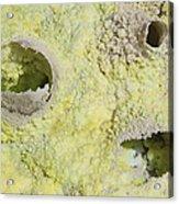 Fumarole Deposits In The Dallol Acrylic Print