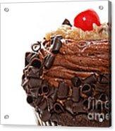 German Chocolate Cupcake 2 Acrylic Print