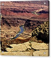 Grand Canyon Colorado River Acrylic Print