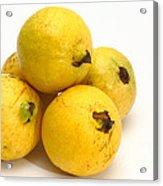Guava Fruits Acrylic Print
