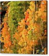 Hang Gliding The Autumn Colors Acrylic Print