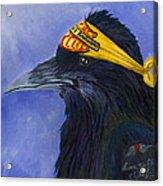 Harley Ravenson Acrylic Print by Amy Reisland-Speer