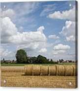 Harvest Time In France Acrylic Print