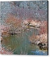 Headwaters  Acrylic Print