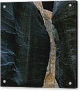 Hikers In The Siq Canyon Leading Acrylic Print