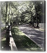 In My Dream The Road Less Traveled Acrylic Print