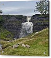 In The Yorkshire Dales Acrylic Print