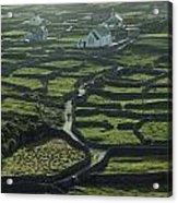 Inisheer, Aran Islands, Co Galway Acrylic Print