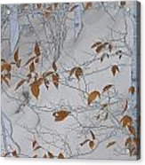 Ironwood In The Snow Acrylic Print