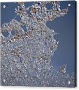 Jammer Fractal Ice 001 Acrylic Print