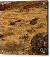 John Day Painted Hills Acrylic Print
