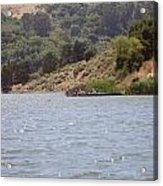 Lake Shabot Acrylic Print