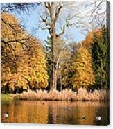 Lazienki Park Autumn Scenery Acrylic Print