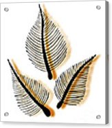 Leaves Acrylic Print by Frank Tschakert