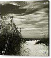 Let's Go To The Beach Acrylic Print