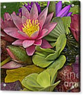 Lilies No. 33 Acrylic Print by Anne Klar