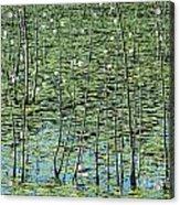 Lilly Pond Acrylic Print by John Greim