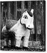 Lost Pony Acrylic Print