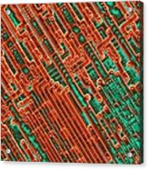 Microchip Circuitry, Sem Acrylic Print by Power And Syred