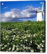 Millisle, County Down, Ireland Acrylic Print