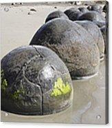Moeraki Boulders, Koekohe Beach, New Acrylic Print