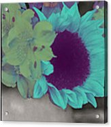 Moonflower Acrylic Print
